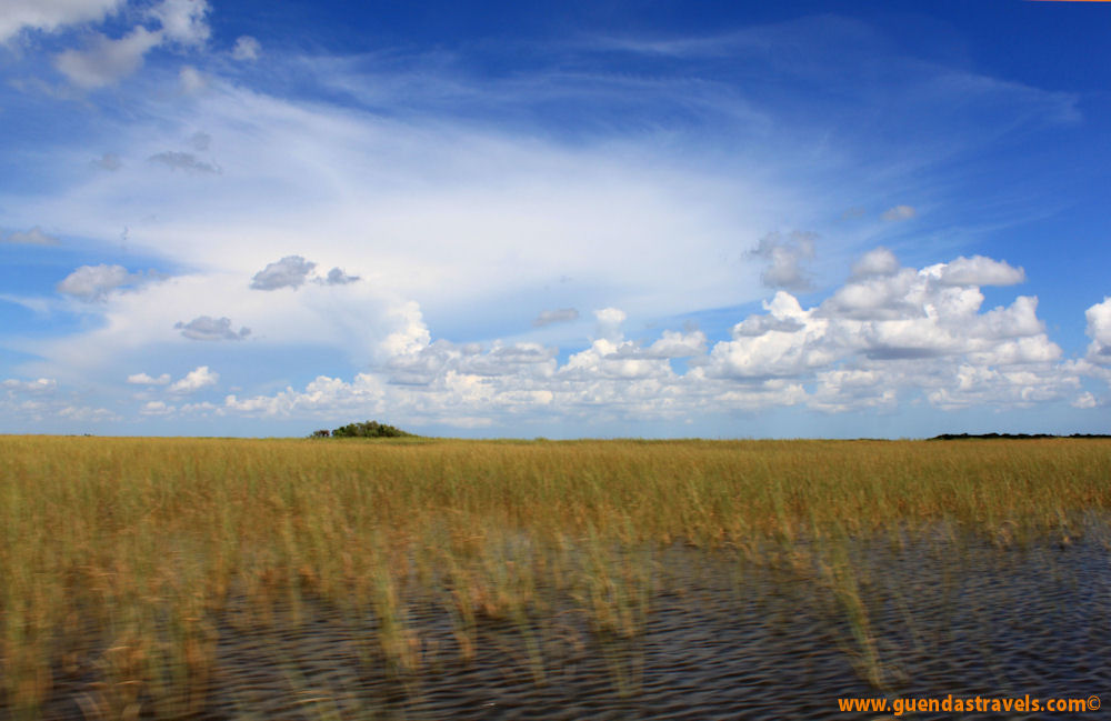 Guenda's Travels - Florida