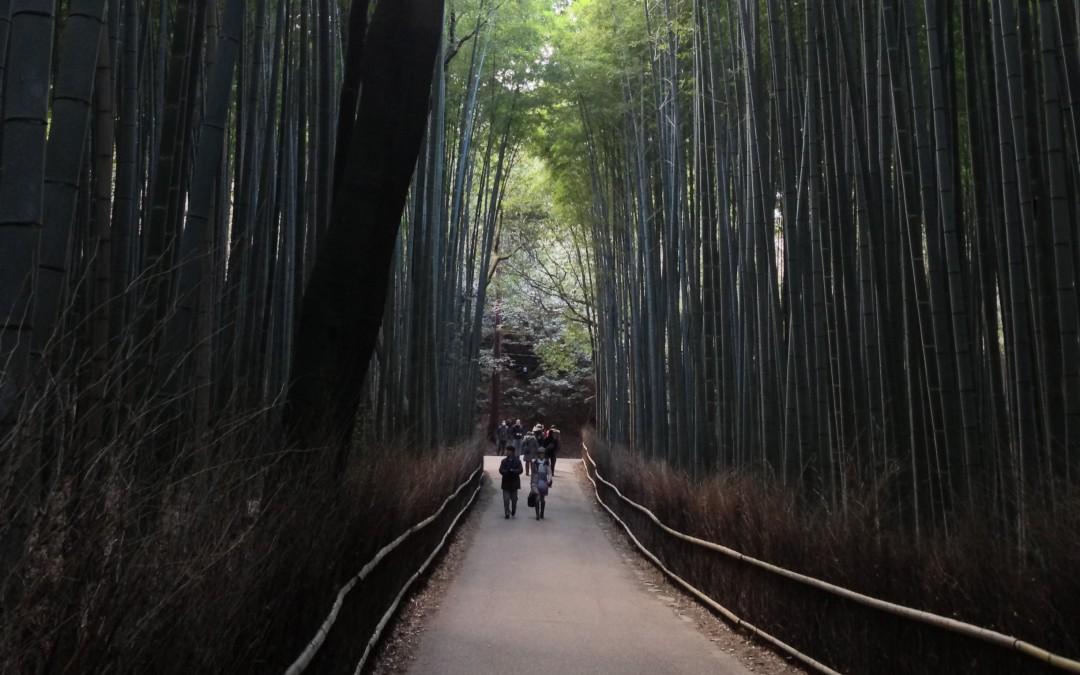 #iamalocal Giappone – E poi mi chiedono perché ami così tanto il Giappone!