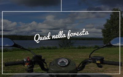 Lapponia in estate: con i quad nella foresta svedese