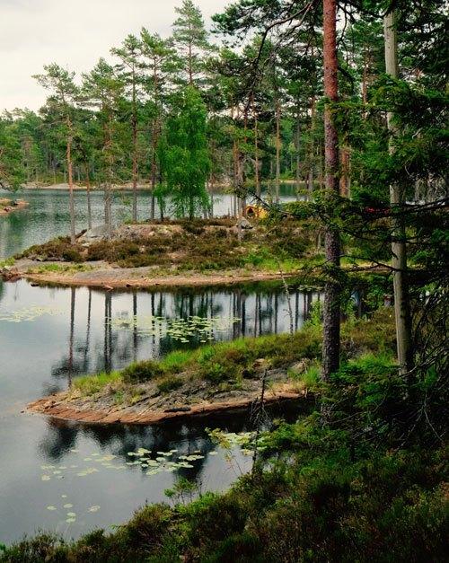 5-giorni-on-the-road-in-Svezia--Parco-Nazionale-Tresticklan