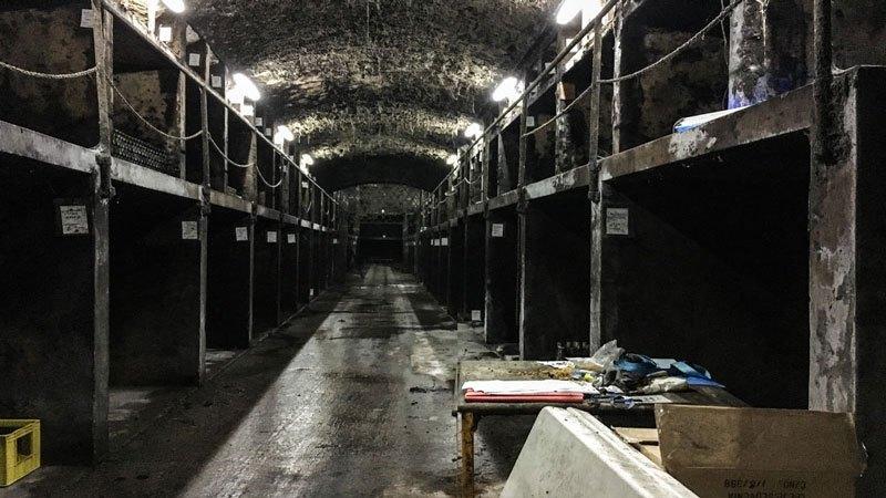 Vinag-Wine-Cellar-Ampolle