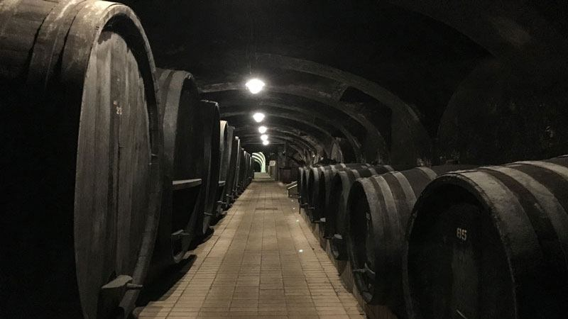 Vinag-Wine-Cellar-Interno-Cantina