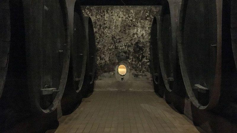 Vinag-Wine-Cellar-Tank-Eco