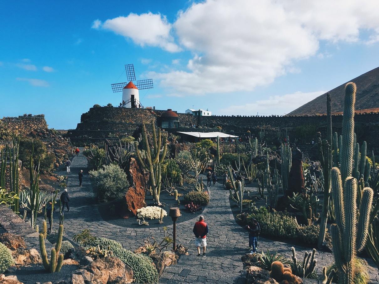Jardín de Cactus di Lanzarote