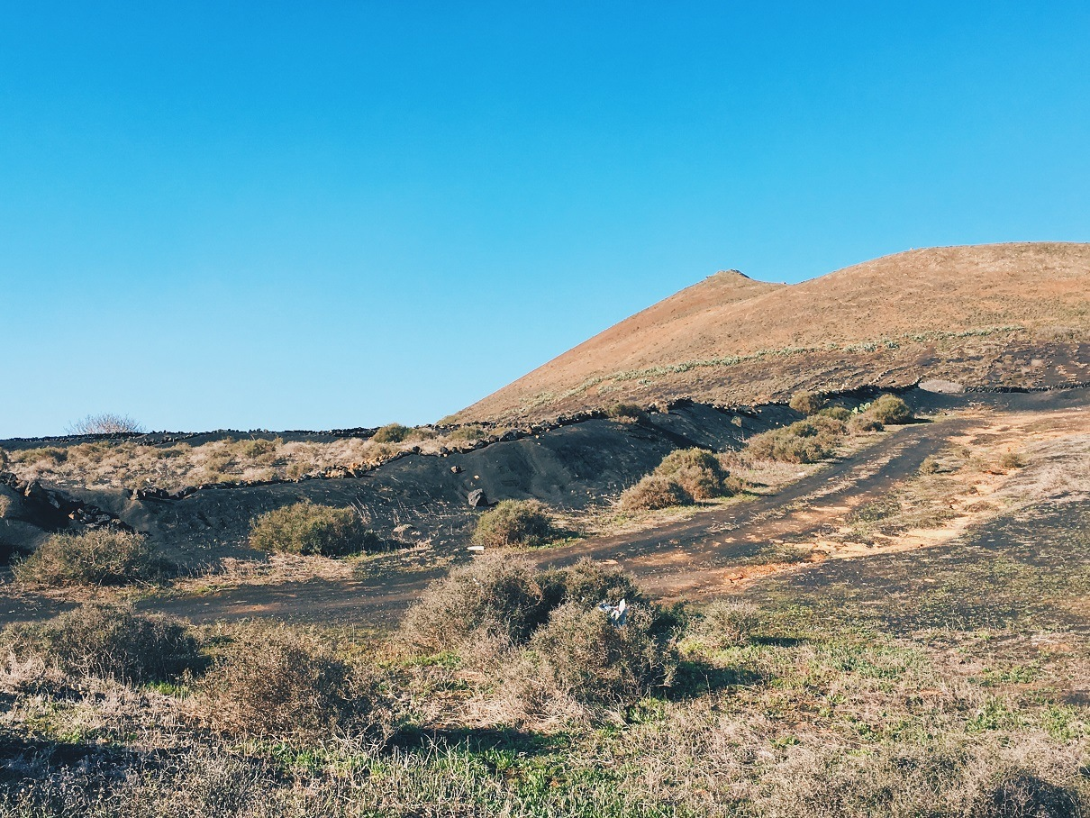 Trekking sui vulcani a Lanzarote