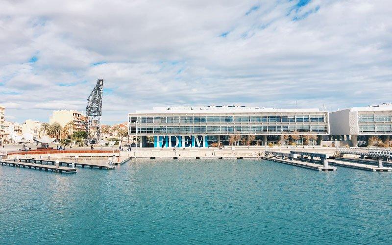 Valencia Porto - Catamarano