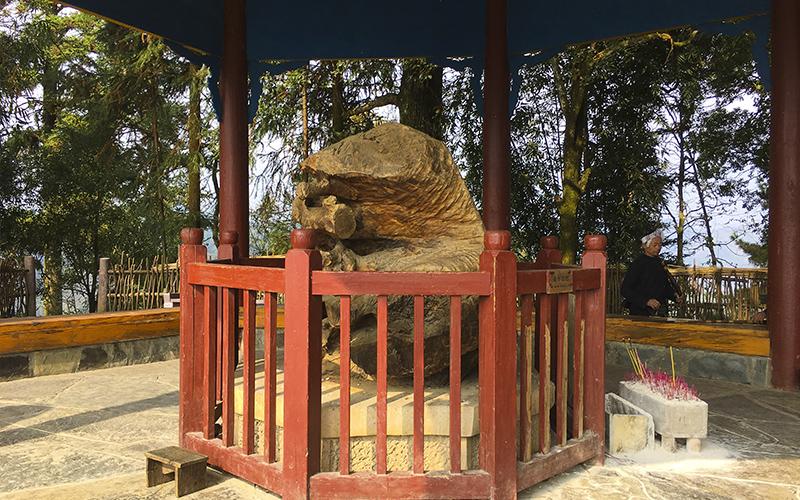 Basha-Miao-Village-Santuario