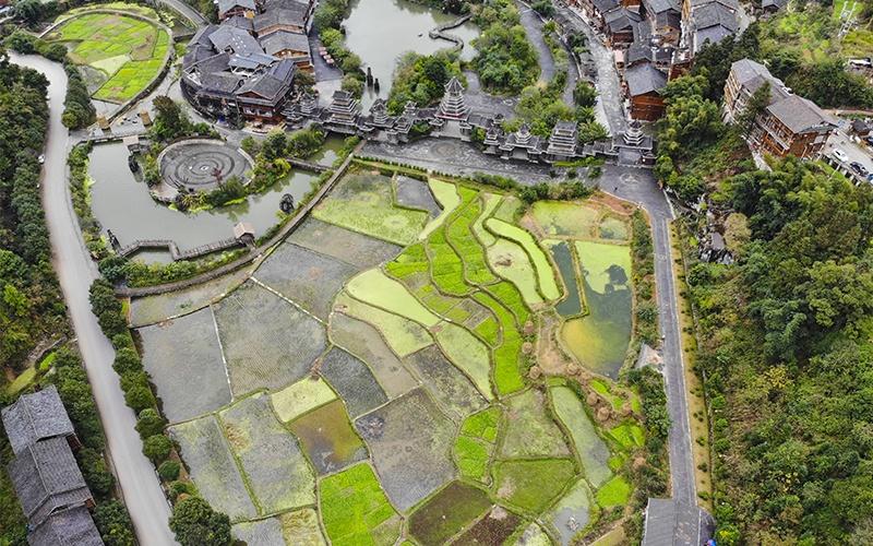 Zhaoxing-Vista-dall-alto-su-risaie-e-fiumi