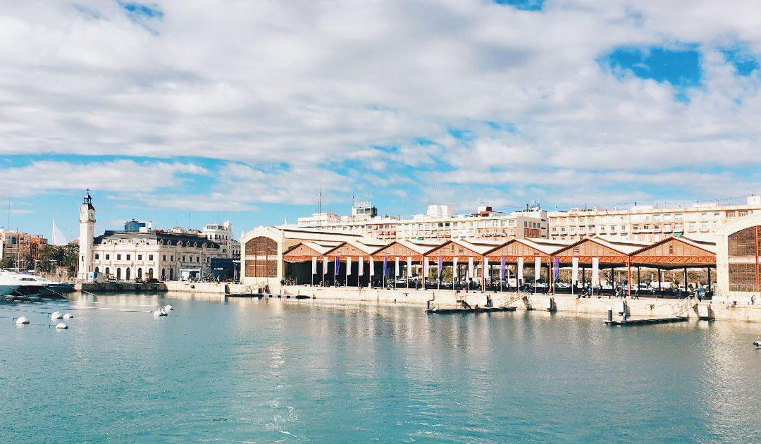 In catamarano per il porto di Valencia: che spettacolo