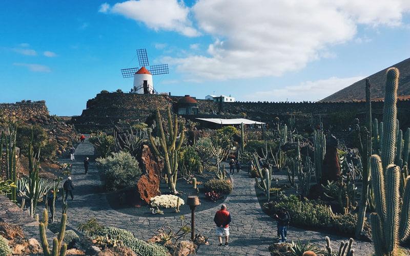 Jardin_de_Cactus_Guatiza-